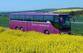 Brauer Reisen GmbH